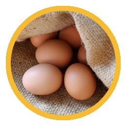 rotten eggs Centerpoint Energy